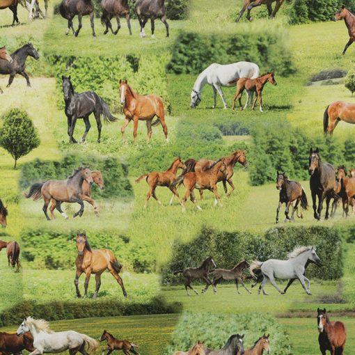 digitale printstof paarden katoenen decoratiestof gordijnstof meubelstof 91299-22, 1.151030.1322.525