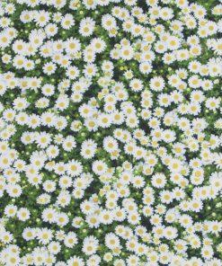 katoenen printstof madeliefjes gordijnstof decoratiestof 91210-01, 1.151030.1209.050