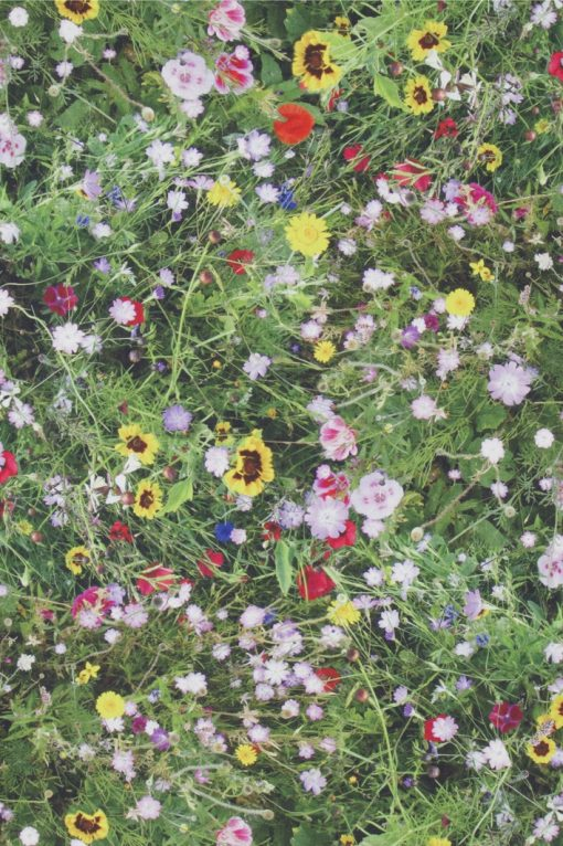 katoenen printstof wilde bloemen gordijnstof decoratiestof 91211-01, 1.151030.1210.525